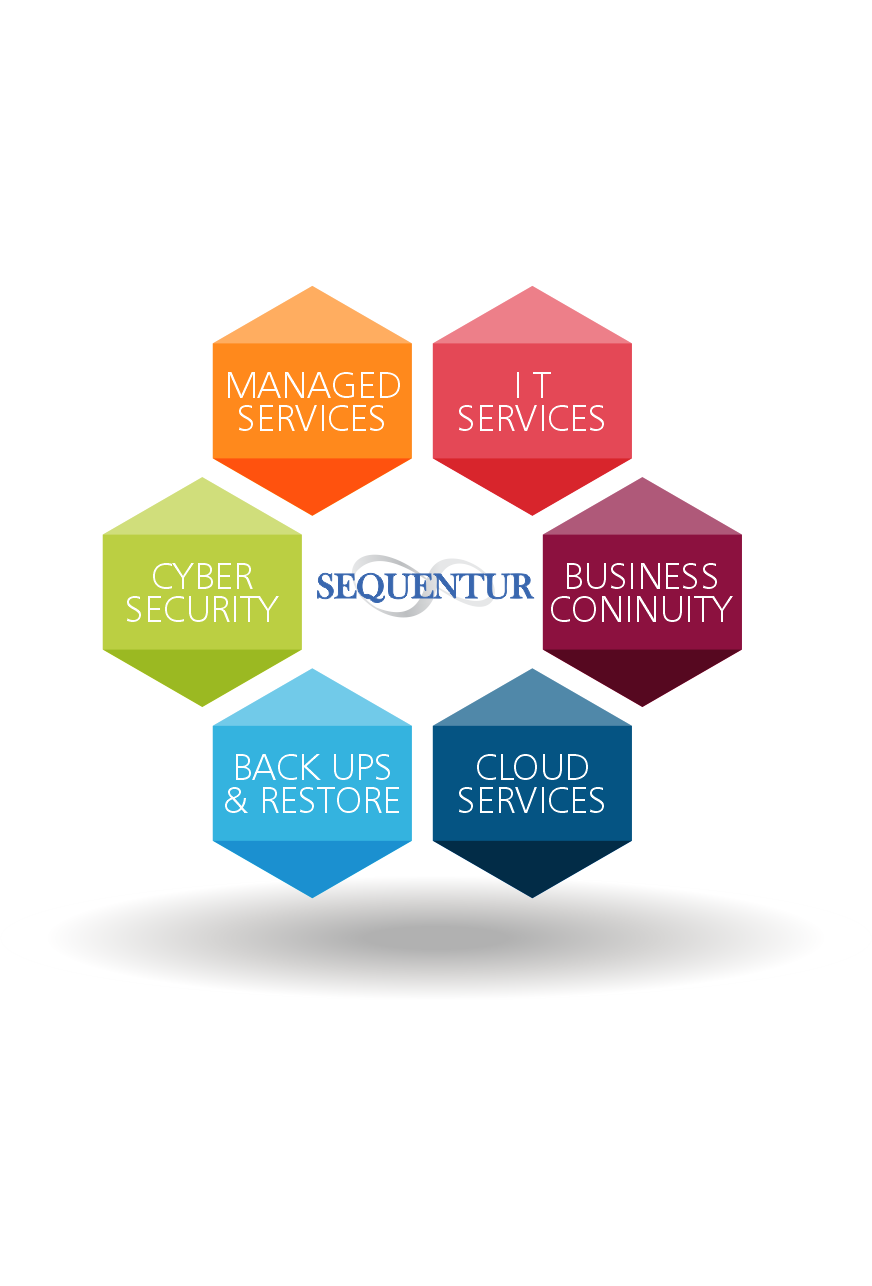 it services tampa